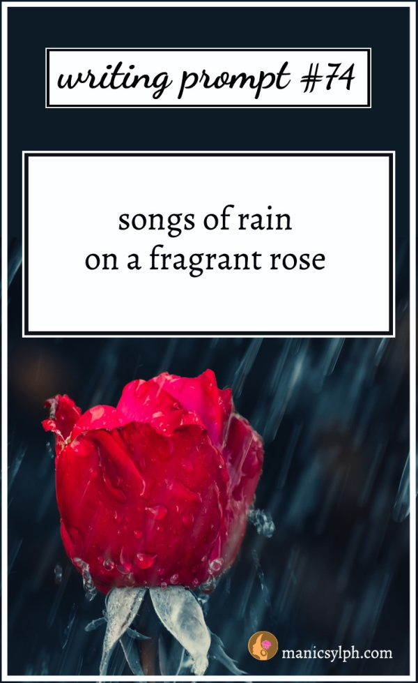 Rain falling on a red rose and writing prompt 74 written on it