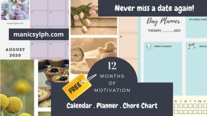 Free organizer- calendar, planner and chore chart