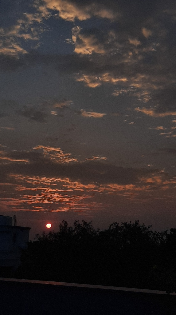 Sunset from a rooftop in India
